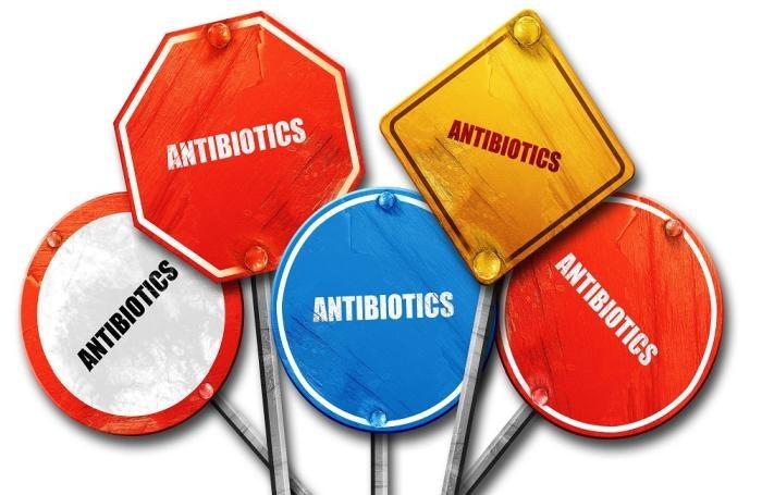 α-Μονογλυκερίδια: για την ενίσχυση της υγείας των ζώων