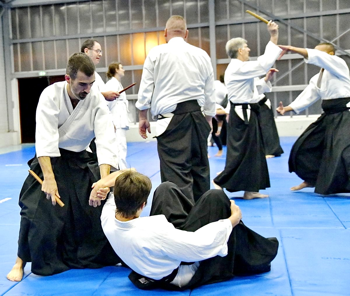 Aïkido Montrevel 01 professeur du dojo