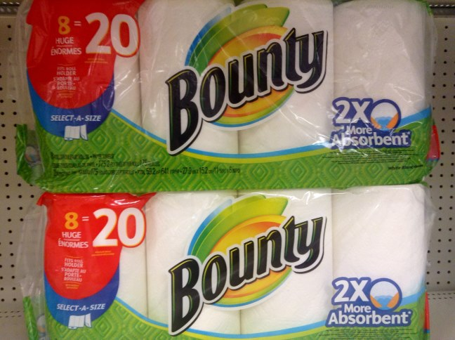 strength of paper towels experiment