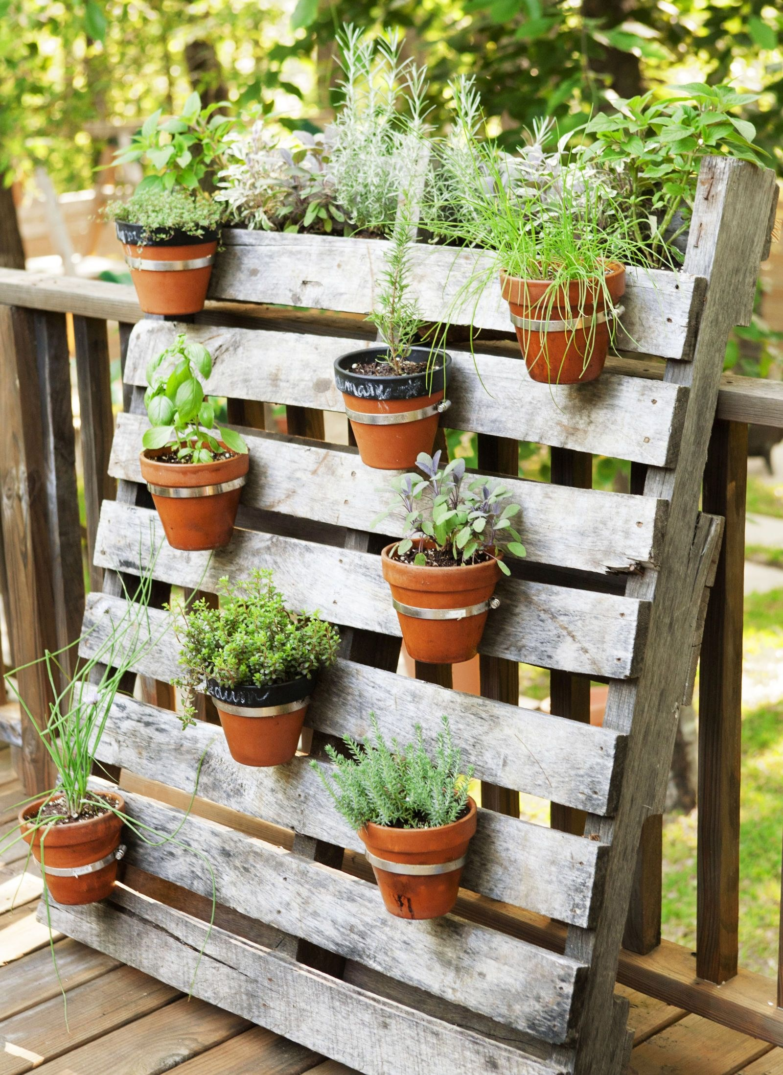 12-easy-container-garden-ideas-for-every-outdoor-space-office-inside-10-patio-container-garden-ideas-most-incredible-and-also-attractive.jpg